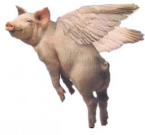 20070831015132!Flying_Pig
