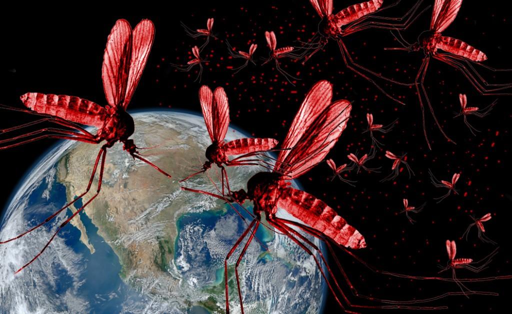 mosquito_invasion