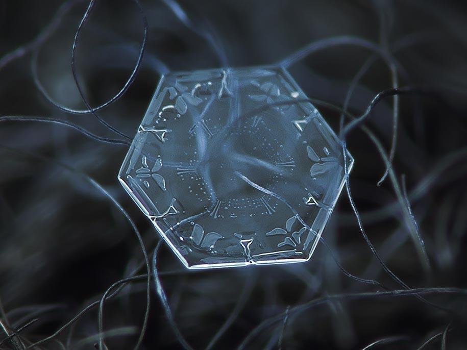 snowflake-closeup-diy-setup-alexey-kljatov-12