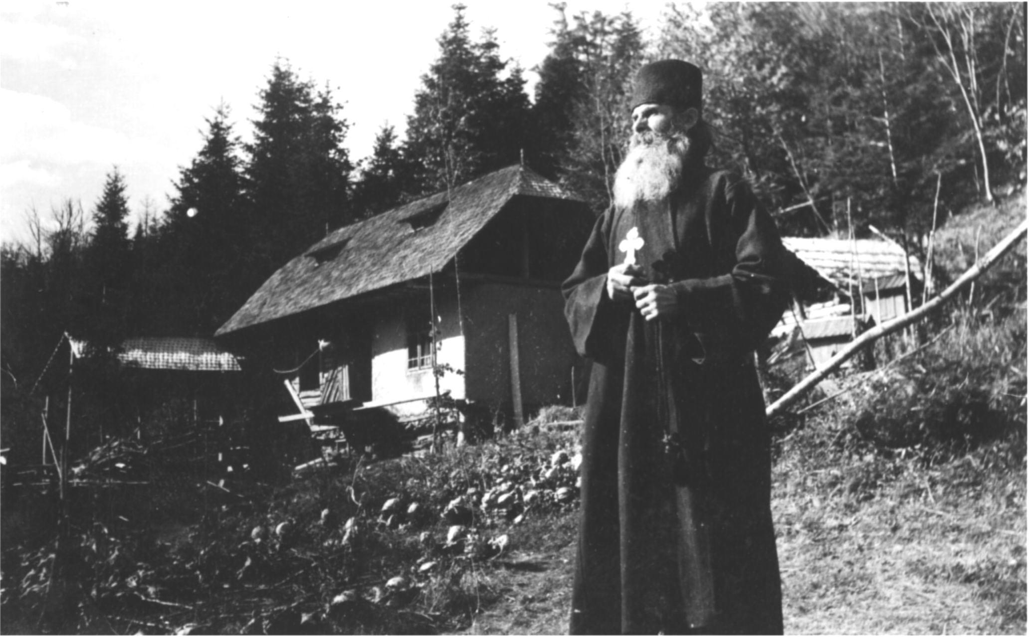 Pustnicii muntilor din Romania: Un exemplu pentru toata lumea ...